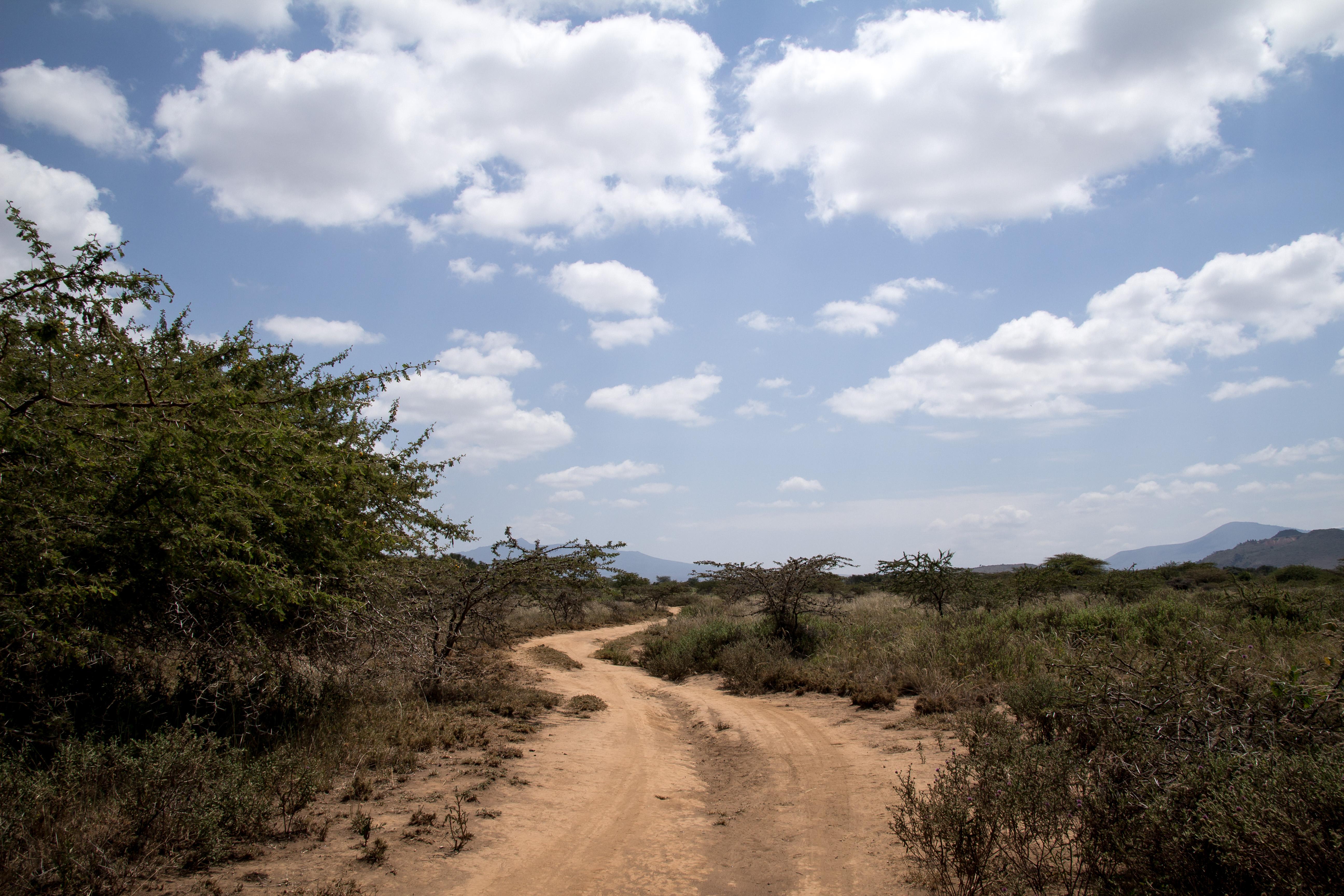 Kenia_Safari_2016_JK-111